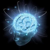 心理学応用システム画像